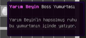 yarim beyin.png